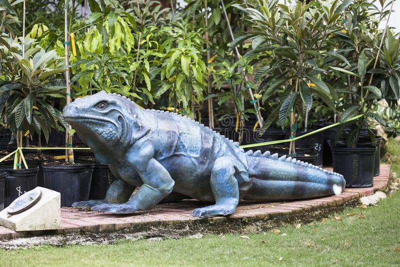 Preservação azul da iguana foto de stock