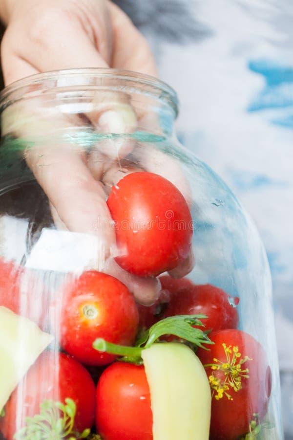 Preservação home dos tomates a mão estabelece os tomates em um frasco para enlatar para o inverno fotos de stock royalty free