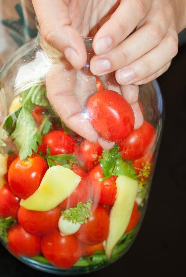 Preservação home dos tomates a mão estabelece os tomates em um frasco para enlatar para o inverno fotografia de stock royalty free