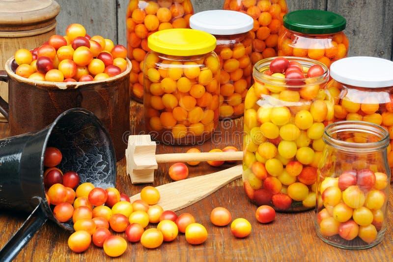 Preservando los ciruelos del mirabel - tarros de cotos hechos en casa de la fruta fotos de archivo