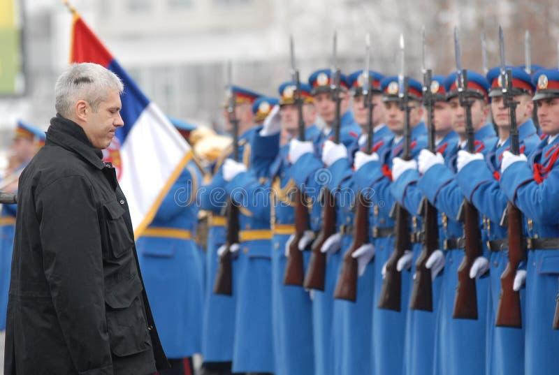 president royaltyfri foto