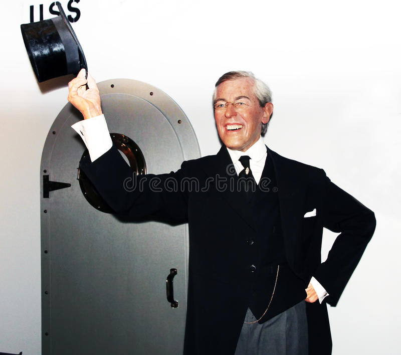 President Woodrow Wilson royalty free stock photo