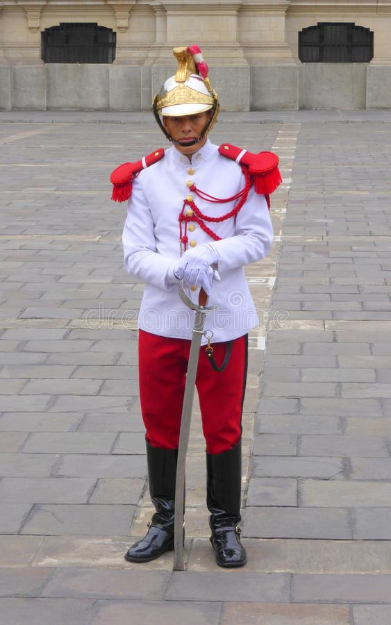 Presidential guard standing in full uniform royalty free stock images