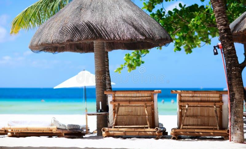 Presidenze di spiaggia sul litorale tropicale immagine stock