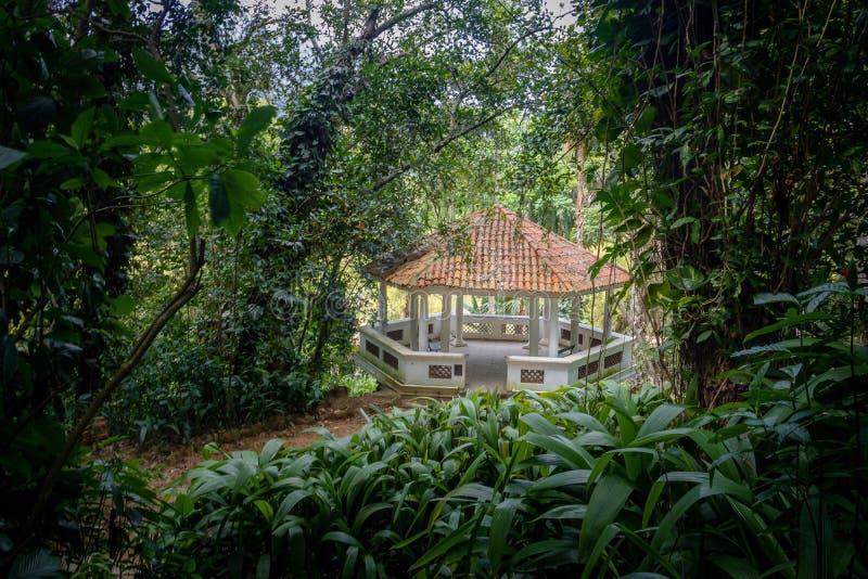Press Belvedere at Jardim Botanico Botanical Garden - Rio de Janeiro, Brazil. Press Belvedere at Jardim Botanico Botanical Garden in Rio de Janeiro, Brazil royalty free stock photography