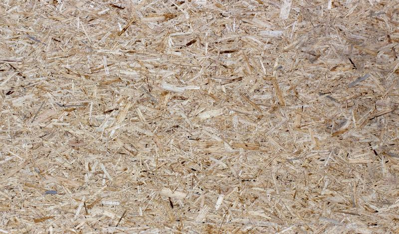 Pressed wooden panel seamless texture of oriented strand board - OSB. Pressed wooden panel background, seamless texture of oriented strand board - OSB stock image