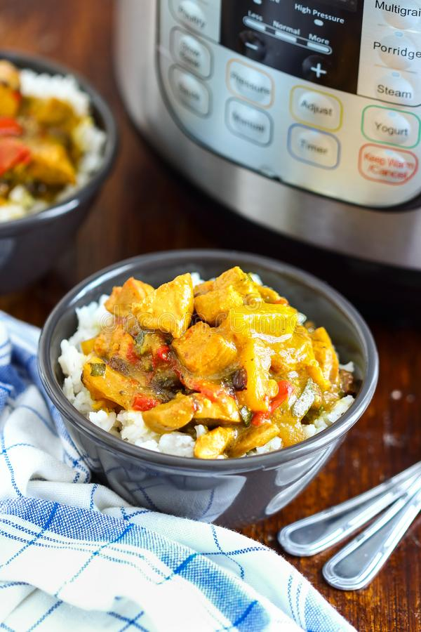 Pressure Cooker Chicken Curry. Homemade chicken curry made in instant pot stock image