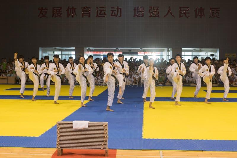 Prestaties-openende ceremonie--De vriendschappelijke concurrentie van het Achtste GoldenTeam-Koptaekwondo royalty-vrije stock foto