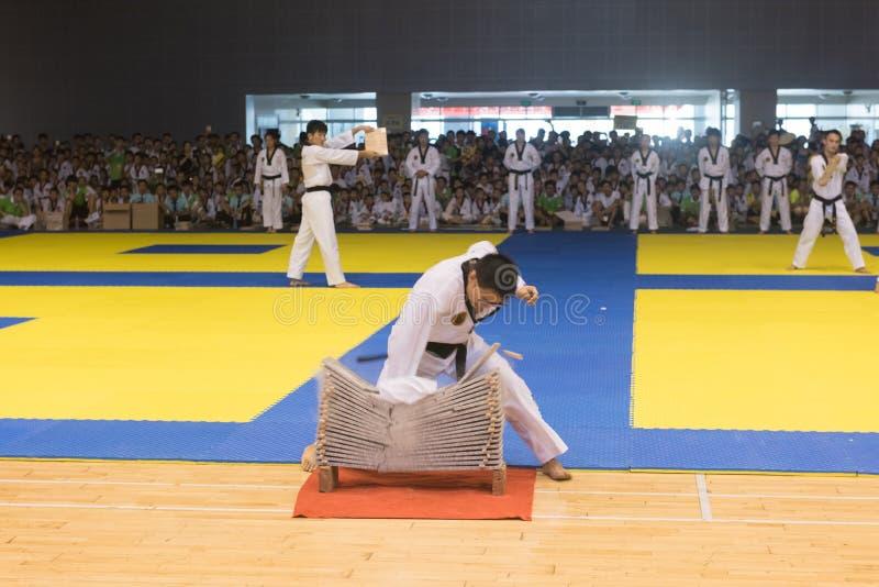 Prestaties-openende ceremonie--De vriendschappelijke concurrentie van het Achtste GoldenTeam-Koptaekwondo stock afbeelding
