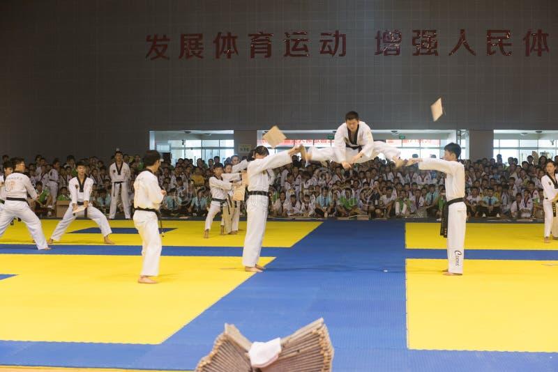 Prestaties-openende ceremonie--De vriendschappelijke concurrentie van het Achtste GoldenTeam-Koptaekwondo stock afbeeldingen