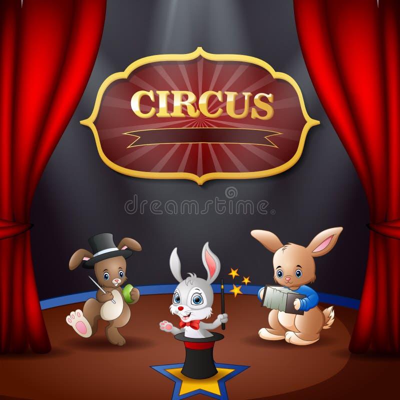 Prestazione del circo dei conigli del fumetto sulla fase illustrazione vettoriale
