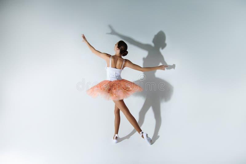 Prestazione di balletto immagini stock