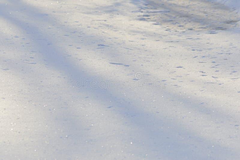 Presto il ghiaccio di fusione della neve della molla di un fiume della foresta nell'ambito della luce solare di inverno di mattin fotografia stock