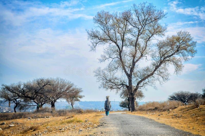 Presto valle Pakistan immagini stock libere da diritti