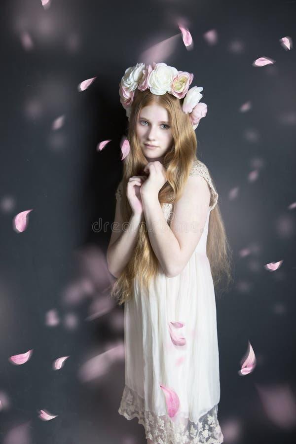 Tween in pink petals royalty free stock image