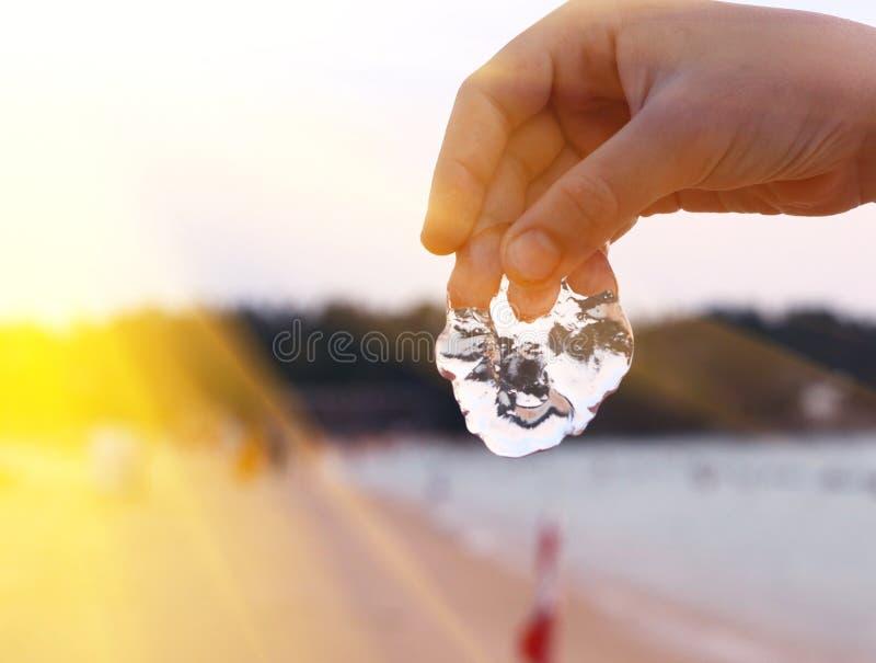 Preteen przystojna chłopiec z jellyfish obrazy stock