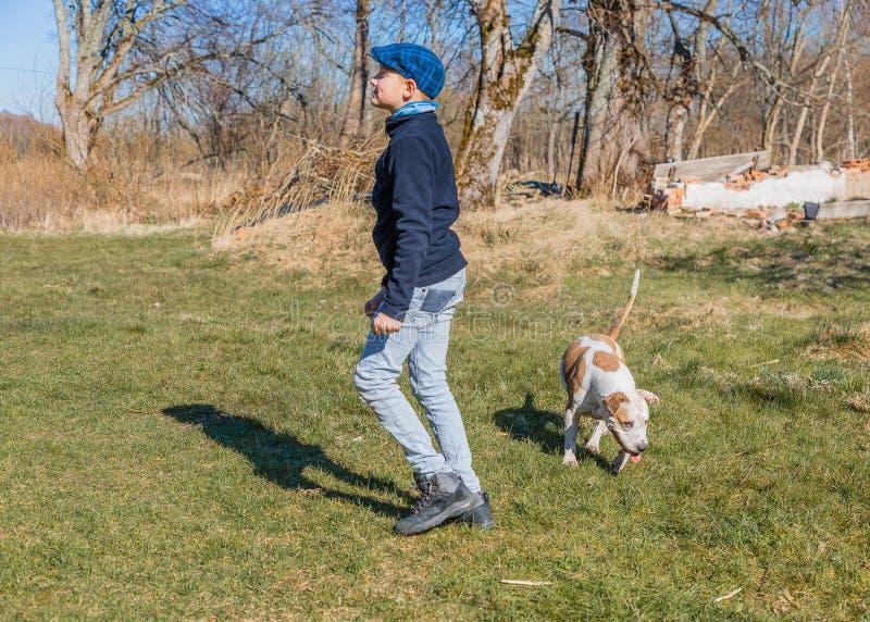 Pretjongen het spelen met grote hond stock fotografie