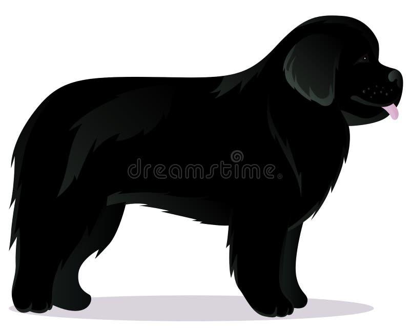 Preto do cão de Terra Nova ilustração stock