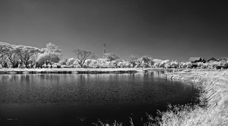 Preto e branco do lago em Surabaya fotos de stock