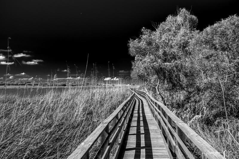 Preto e branco do trajeto de madeira na lagoa de Platamona foto de stock royalty free