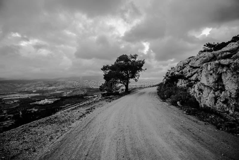Preto e branco, estrada adiante fotografia de stock royalty free