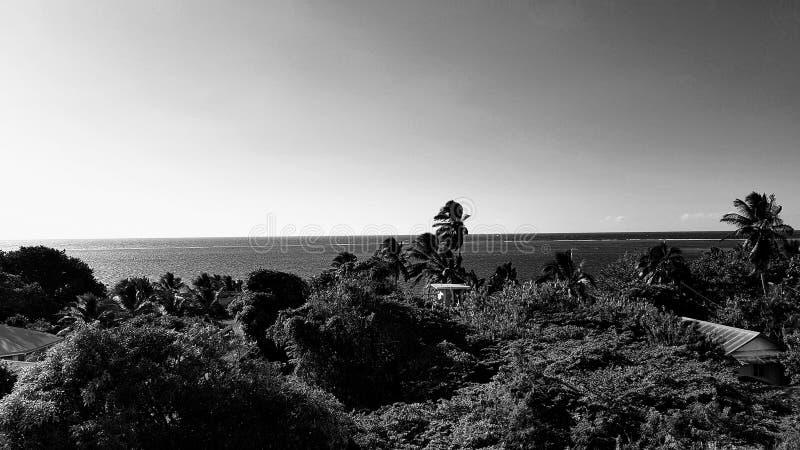 Preto e branco perto de Papeete tahiti imagens de stock royalty free