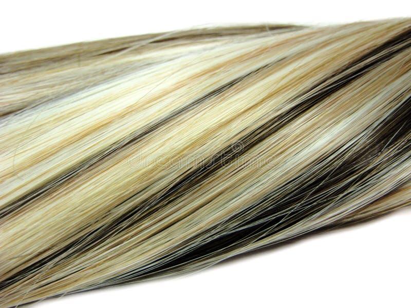 Preto e nó colorido louro do cabelo imagens de stock