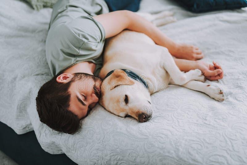 Prettige gebaarde mensenslaap met zijn hond in bed royalty-vrije stock afbeelding