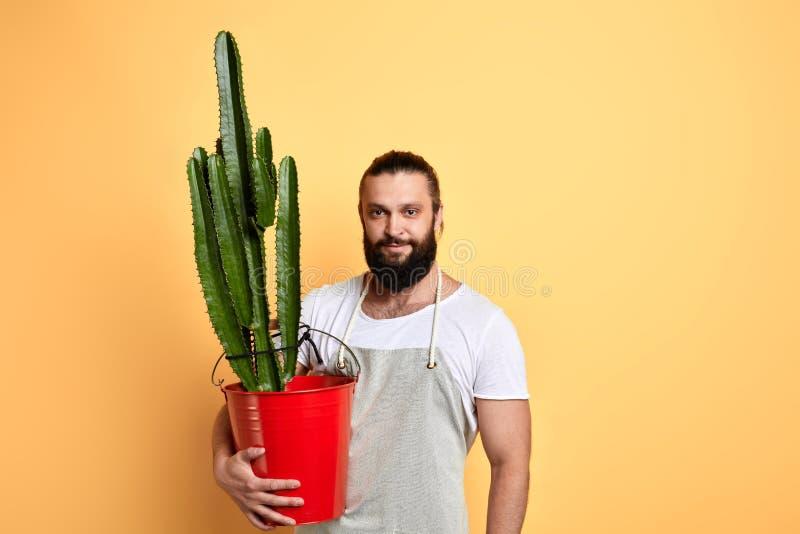 Prettige knappe sterke spiermens die een bloempot houden stock afbeelding