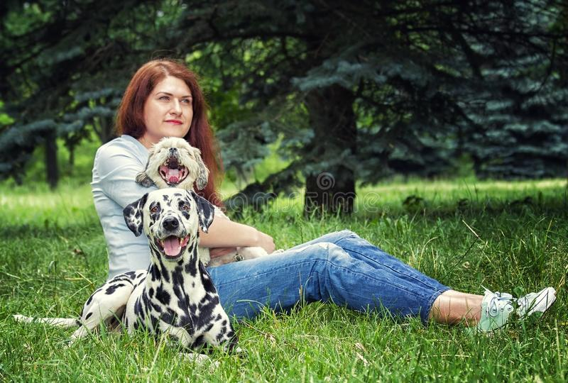 Pretty beautiful woman with long dark hair with dalmatian dog and shitzu stock photos
