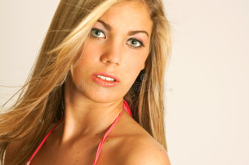 Download Pretty blond woman stock image. Image of looks, female - 9504193