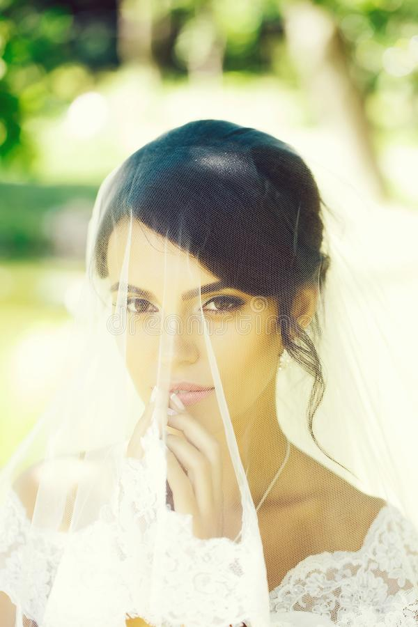 Pretty bride under veil royalty free stock photos