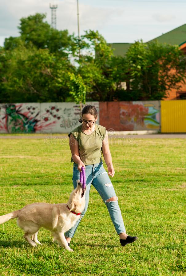 Woman training her dog golden retriever in the park royalty free stock photo