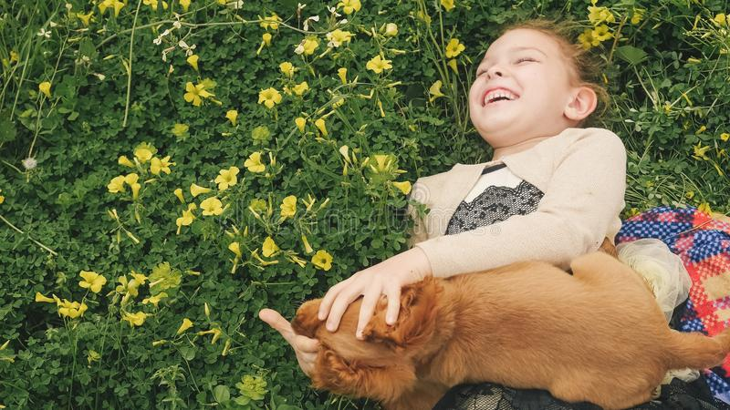 Pretty girl playing on green grass with a puppy stock image