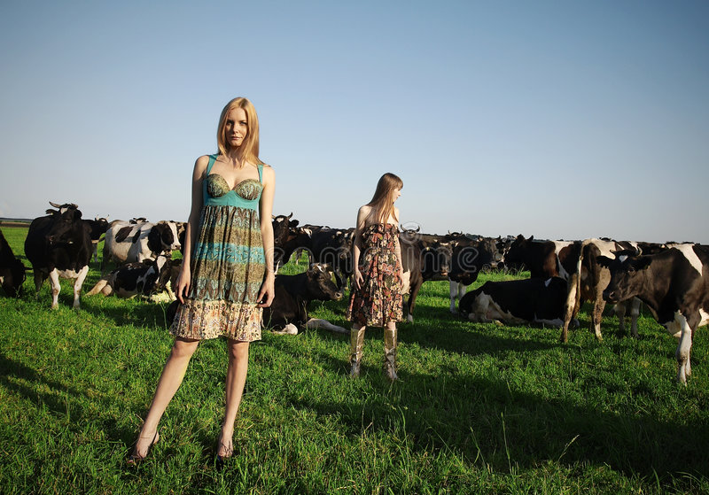 Pretty cow girls royalty free stock photo