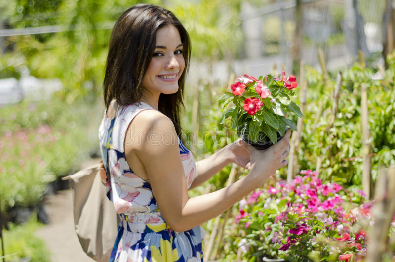 Pretty customer buying plants royalty free stock photo