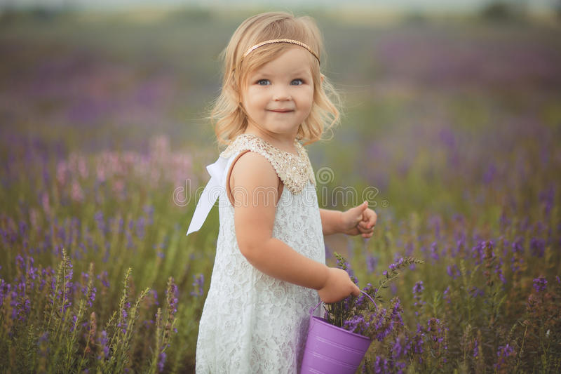 Pretty cute little girl is wearing white dress in a lavender field holding a basket full of purple flowers stock images