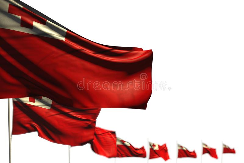 Pretty feast flag 3d illustration - Tonga isolated flags placed diagonal, picture with selective focus and space for text. Beautiful Tonga isolated flags placed stock illustration