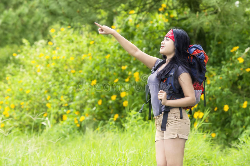 Pretty female traveler on the forest stock photos