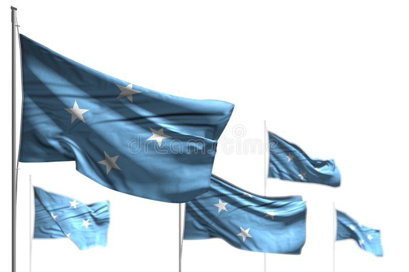 Pretty five flags of Micronesia are wave isolated on white - image with selective focus - any occasion flag 3d illustration. Nice celebration flag 3d vector illustration