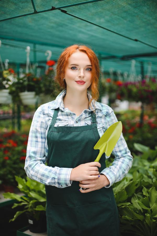 Pretty florist in apron standing with little garden shovel in hand. Young lady dreamily looking in camera while working with flowe royalty free stock image