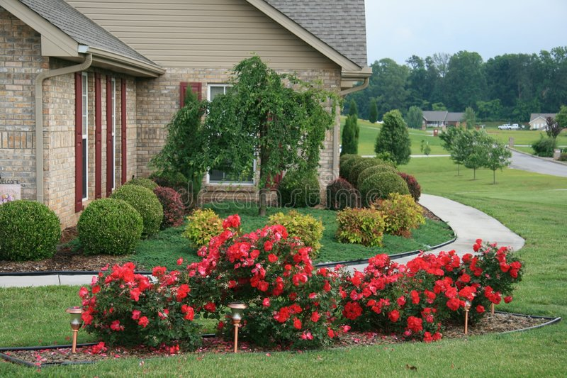 Download Pretty Flowerbed stock photo. Image of close, bushes, resident - 5321040