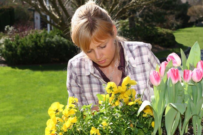 Pretty gardener royalty free stock images