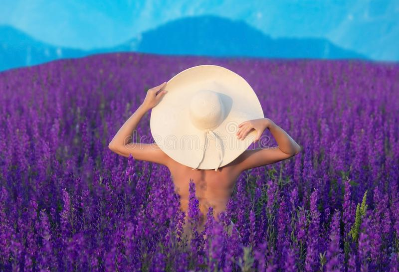 Pretty girl  in big hat standing on  blooming purple field royalty free stock photos