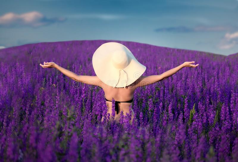 Pretty girl  in big hat standing on  blooming purple field stock photos