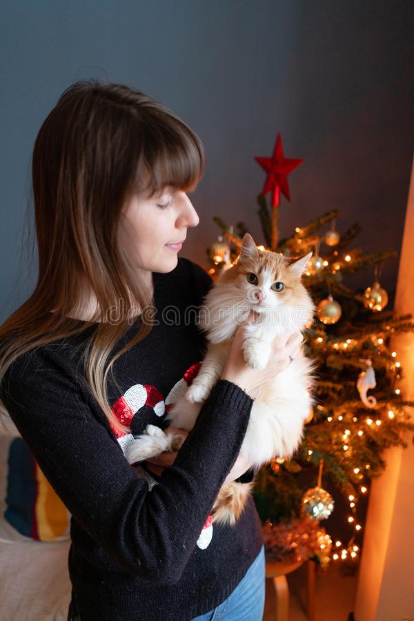 Pretty girl embraces fluffy red and white cat on Christmas tree background. Decorating Natural Danish spruce at home. Winter holidays in a house interior royalty free stock photography