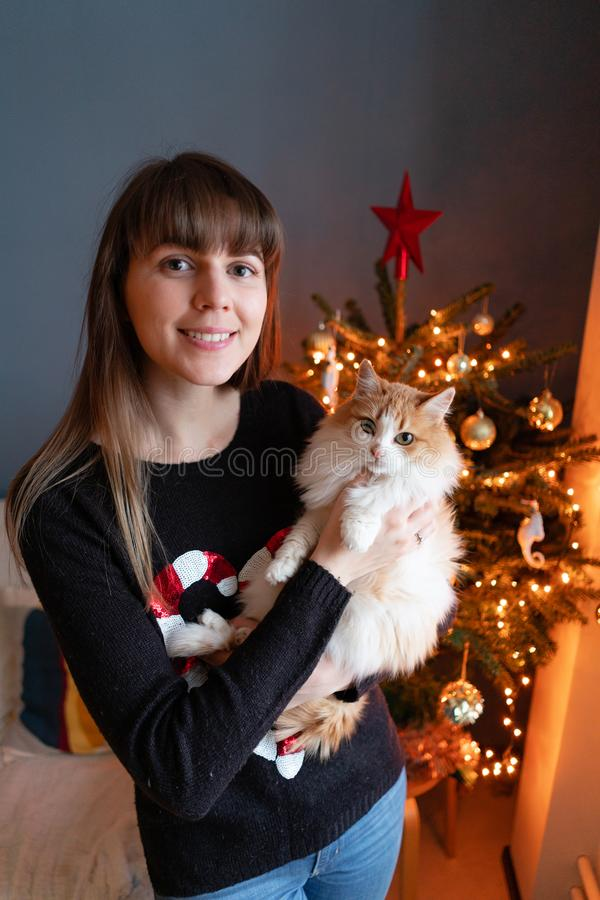 Pretty girl embraces fluffy red and white cat on Christmas tree background. Decorating Natural Danish spruce at home. Winter holidays in a house interior stock photo