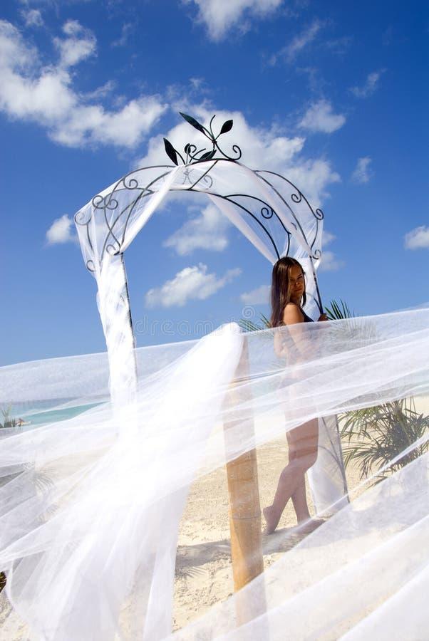 Pretty girl on Jamaica beach stock images