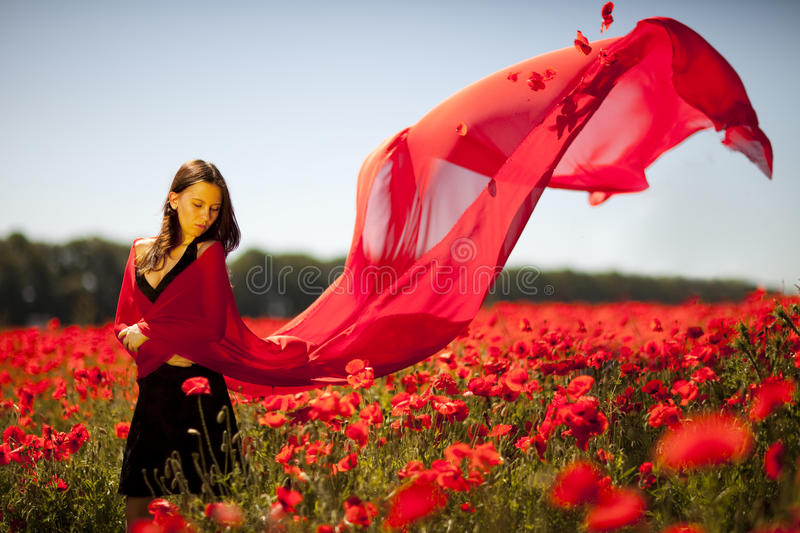Download Pretty Girl In The Poppy Field Stock Image - Image: 9920605