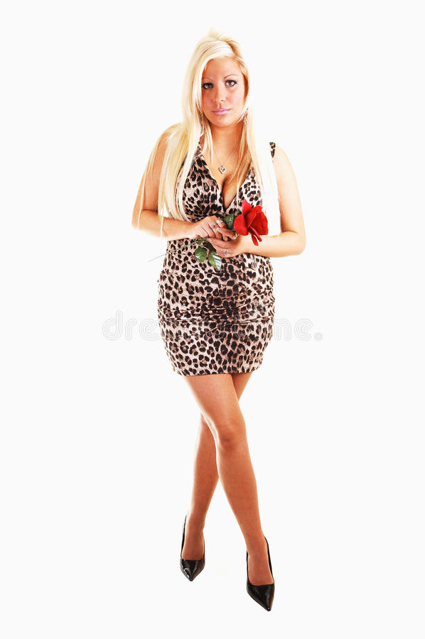 Download Pretty Girl In Short Dress. Stock Image - Image of high, female: 11883273
